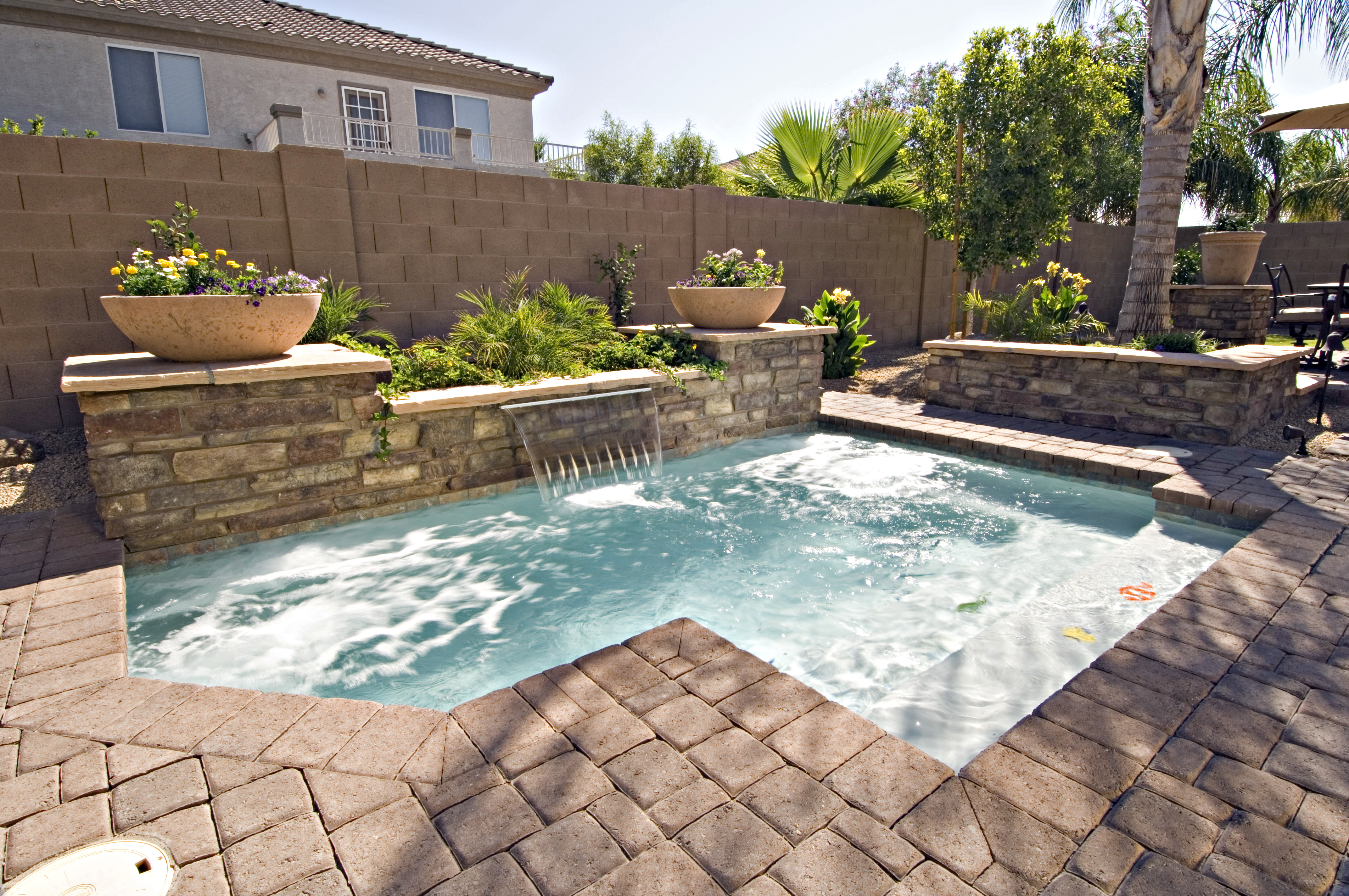 Cocktail pools starting at 19 500 tax california for Pool design options