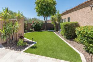 Lush Backyard Green Belt